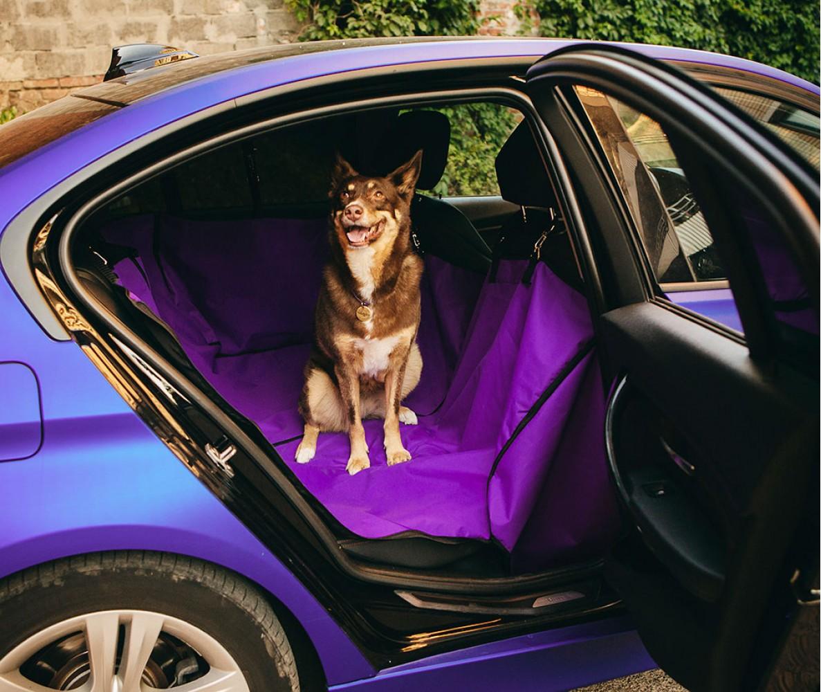 Автогамак для перевозки собак |  фиолетовый |  360°