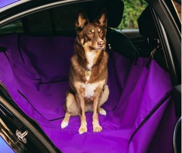 Автогамак для перевозки собак |  фи...