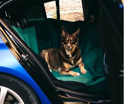 Автогамак для перевозки собак  |  зеленый  |  360°