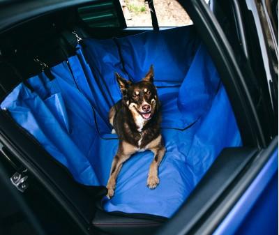 Автогамак для перевозки собак  |  синий |  360°