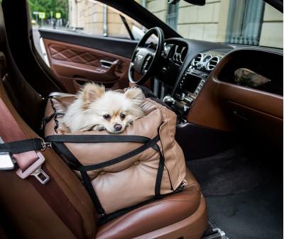 Автокресло переноска  для собак | коричневое
