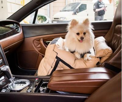 Автокресло переноска для собак | бежевое