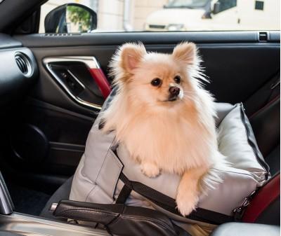 Автокресло переноска для собак | серое