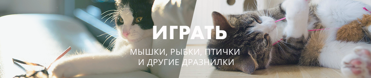 Игрушки для кошек / интерактивные игрушки для кошек