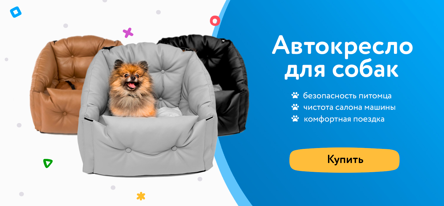 Автокерсла для собак в машину