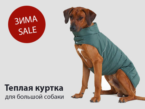 Куртка попона для большой собаки на зиму