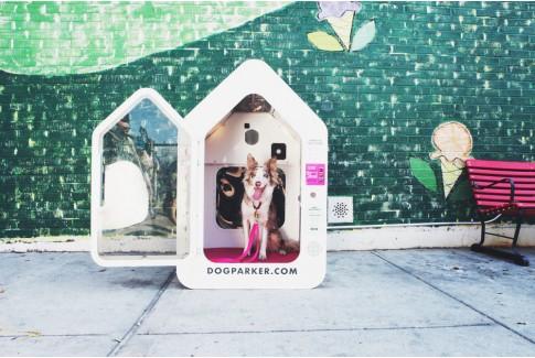 Dog Parker - капсульная гостиница для собак