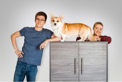 Бренд Tale'o'Tail. Мебель для собак и их владельцев