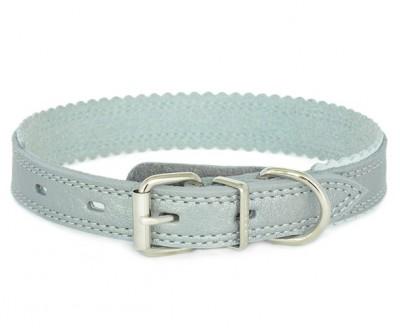 Ошейник для собаки кожаный серебряный  | 2 см  | S- M