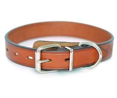 Ошейник кожаный для собак с тиснением   | 2 см
