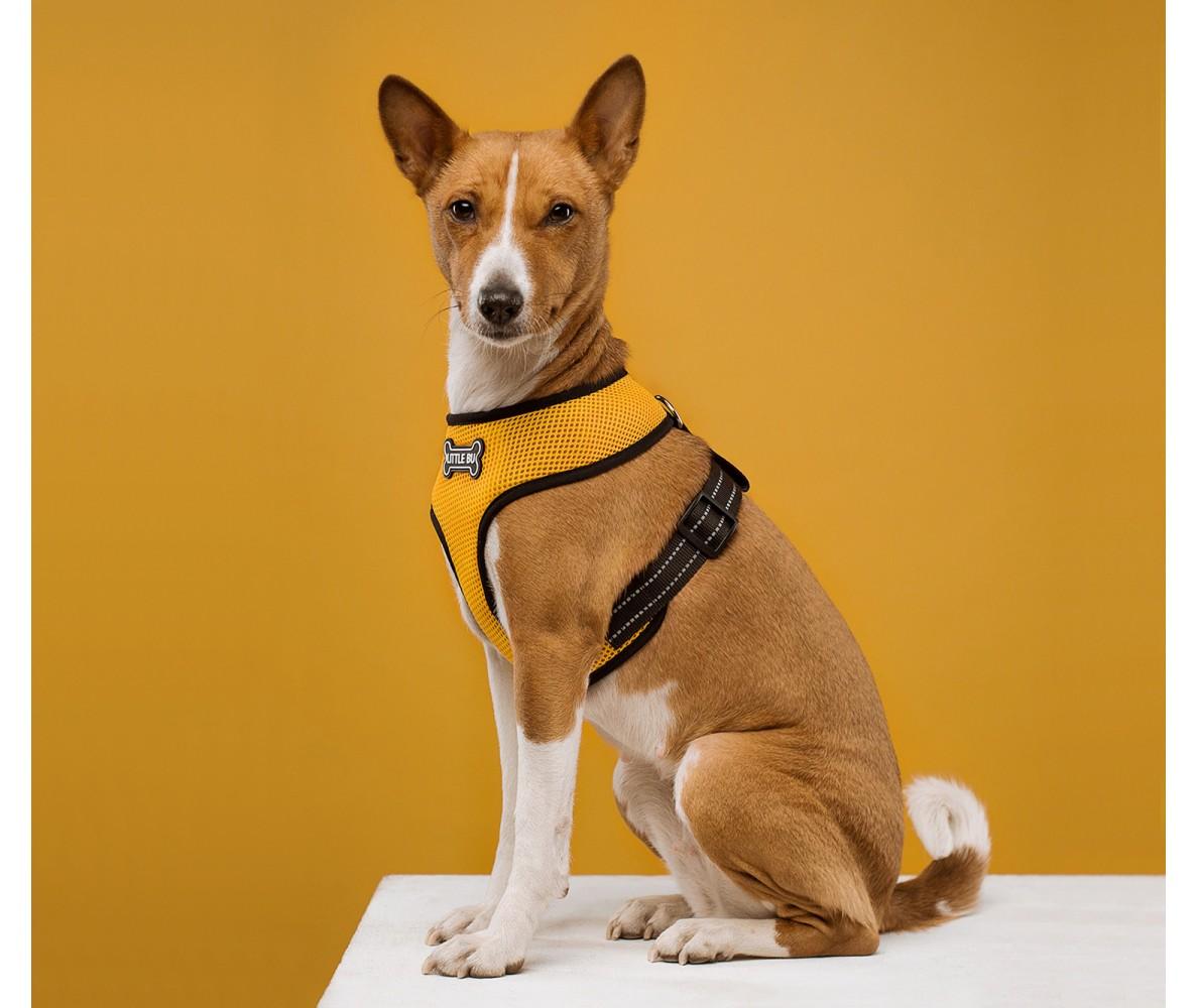"""Шлейка для собак """"Yellow"""", нейлон"""