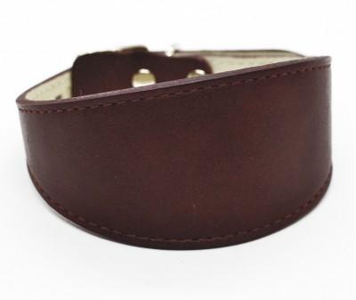 Ошейник селедка кожаный, винный | ширина 5 см / 28-35 см