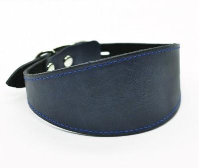 Ошейник селедка кожаный, графит с синей строчкой | ширина 5 см / 28-35 см