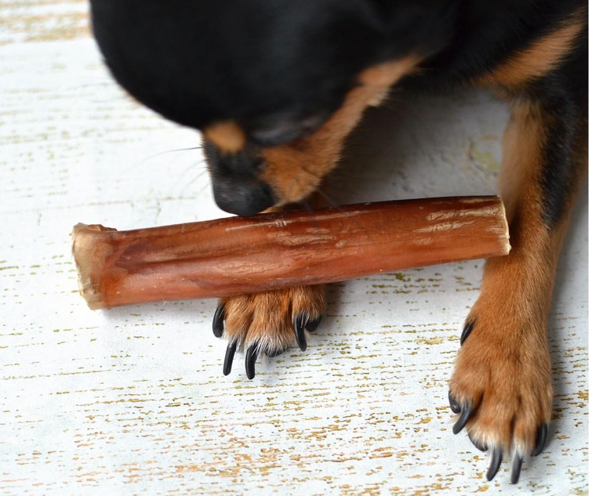 Бычий корень  для собак 10-15 см | 100 гр