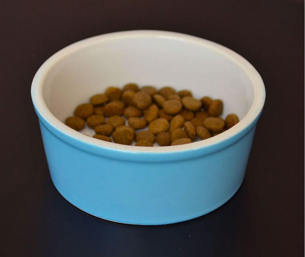 Миска для собак и кошек керамическая  голубая | 450 мл