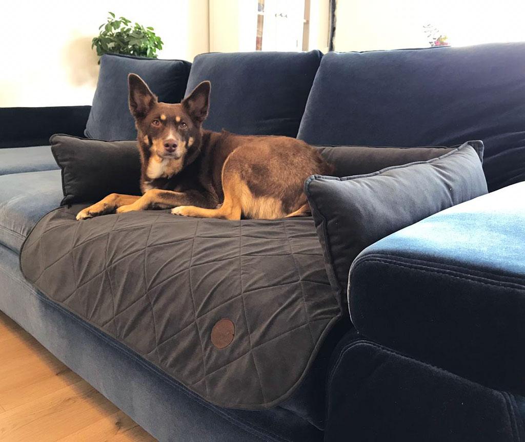 Лежак на диван для собак , коричневый (НА ЗАКАЗ)