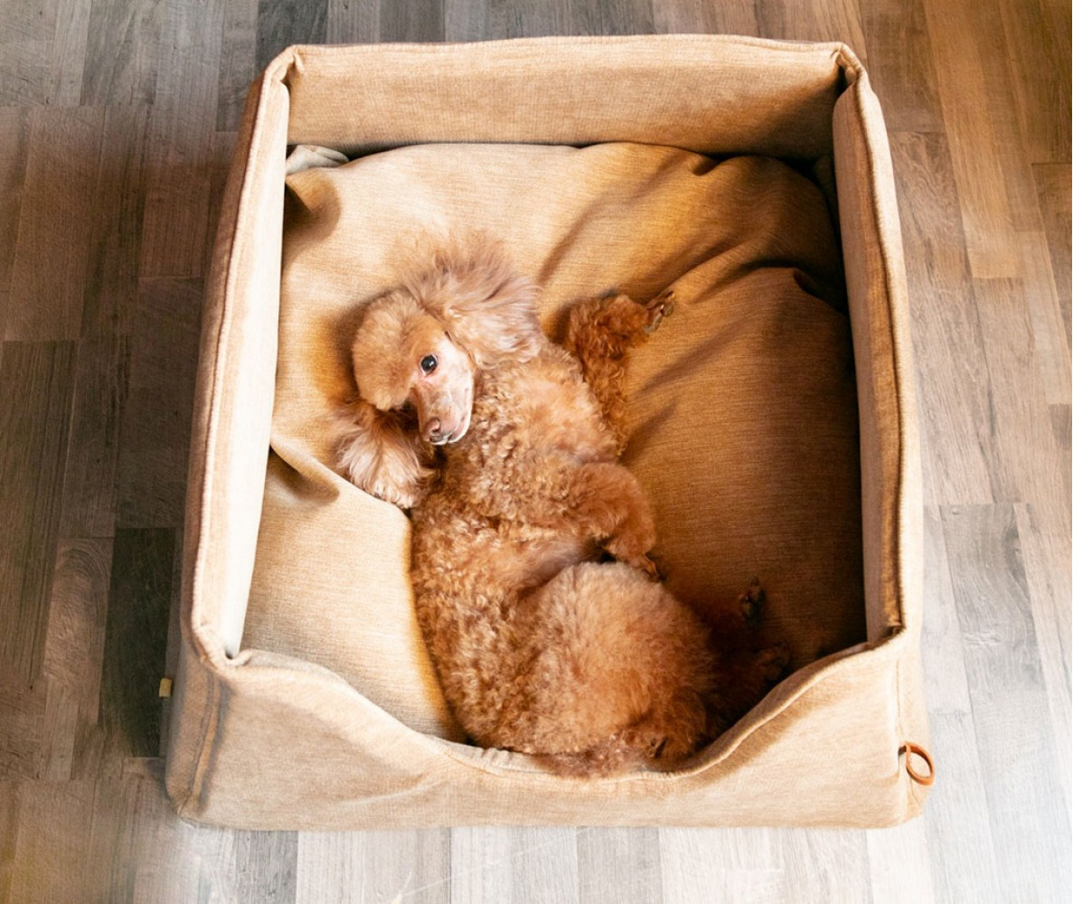 """Лежанка для собак  """"Box"""" 55x55 см    бежевый"""