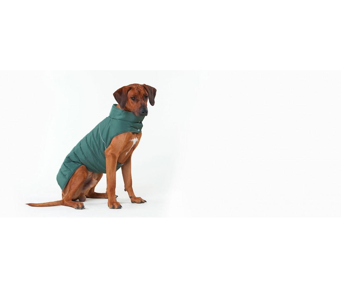 Теплый жилет Active для большой собаки,  болотный  | L