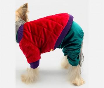 Куртка для собаки, бархатная | крас...