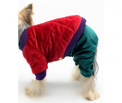 Куртка для собаки, бархатная | красная
