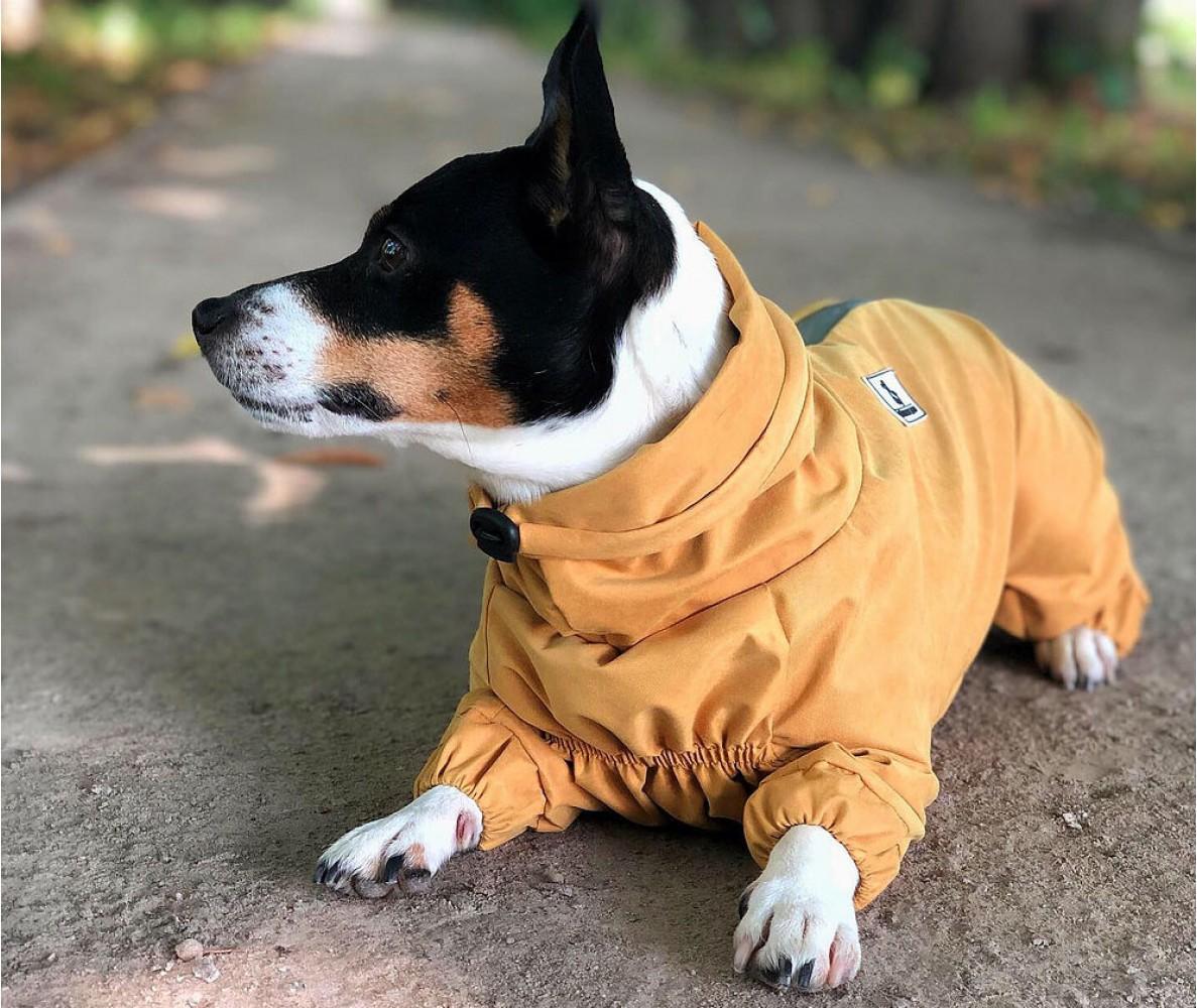 Дождевик - грязевик для собак, черный