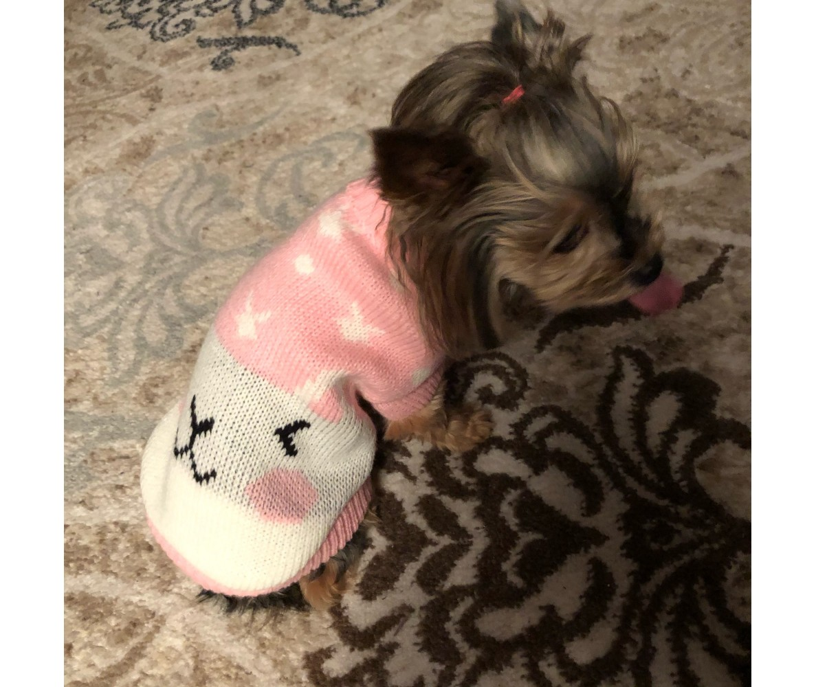 "Свитер для собак и кошек ""Pinky"",  XS"