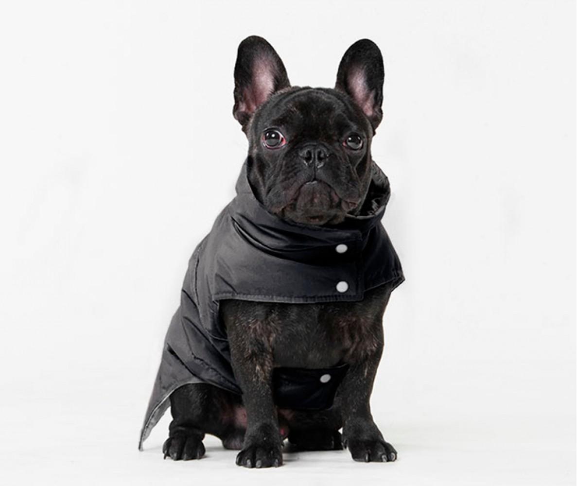 Теплый жилет Active черный, для мопсов , бульдогов | M