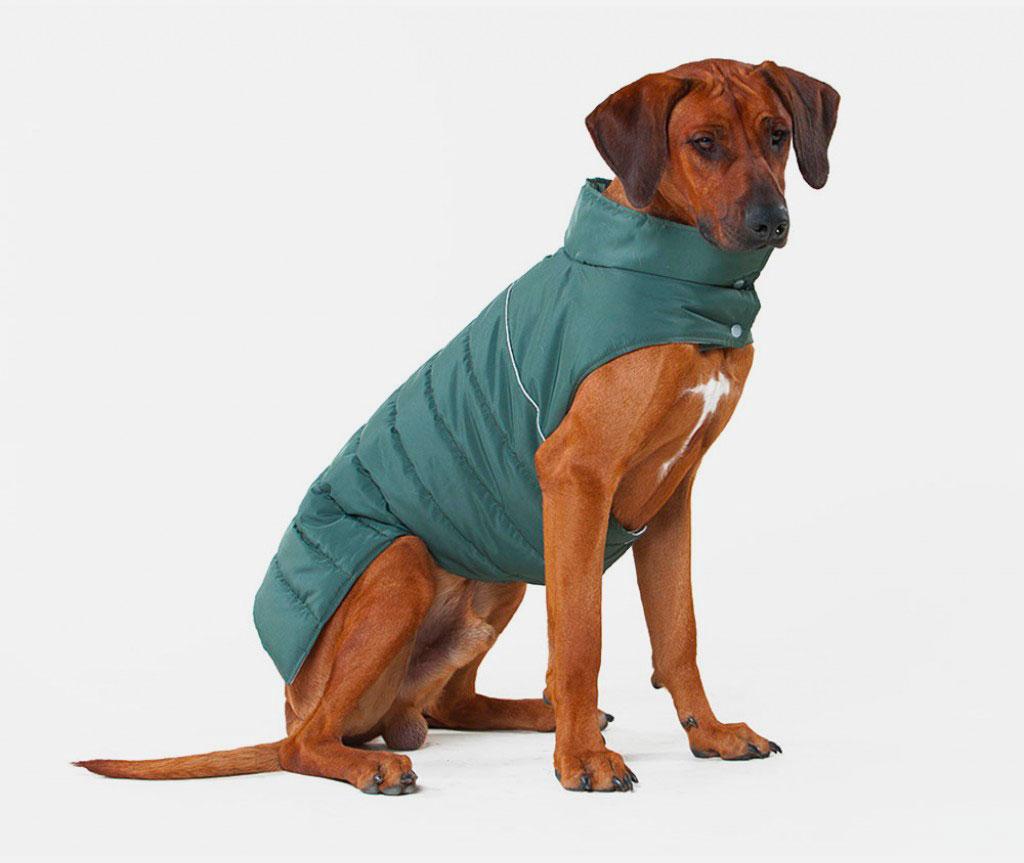 Теплый жилет Active для большой собаки,  болотный    L