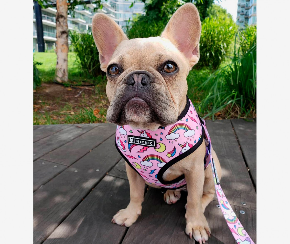 "Шлейка для собак ""Единорог"", розовая"