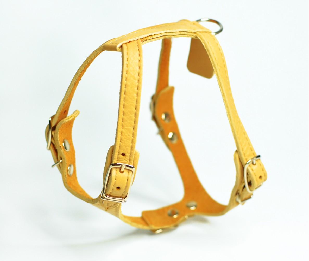 Шлейка кожаная для маленьких собак и кошек, желтая, шея 17-20 см / грудь  29-32 см