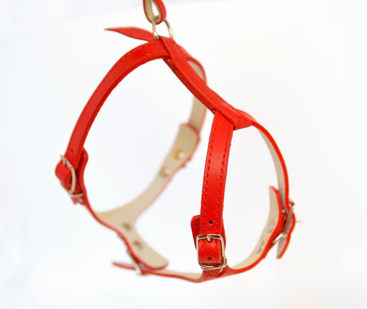 Шлейка кожаная для средних собак, красная, шея 24-35 см / грудь  33-42 см | M