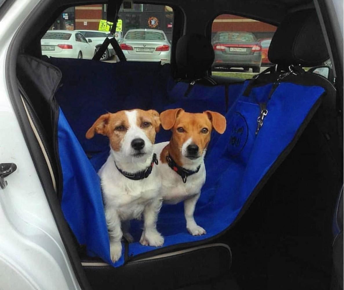 Автогамак для перевозки собак  |  зеленый